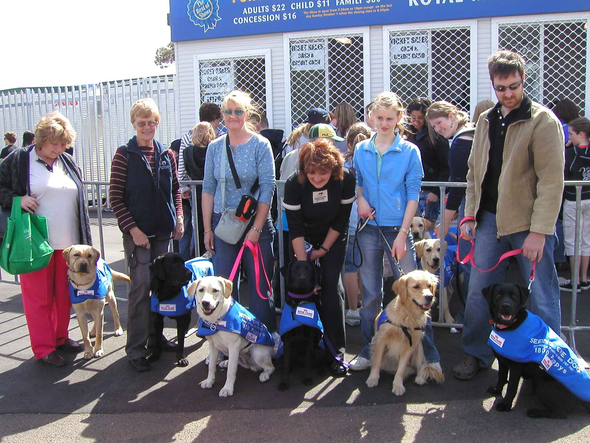A group of carers with their seeing eye dogs